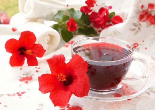 Hibiskus çayı Nasıl Demlenir Hibiskusgentr
